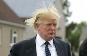 Donald Trump: racist failed businessman; buffoon; republican presidential candidate