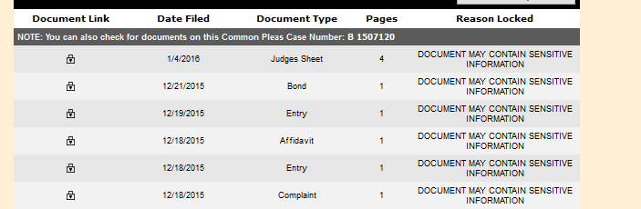 Court records after Santilli was released on gun charges