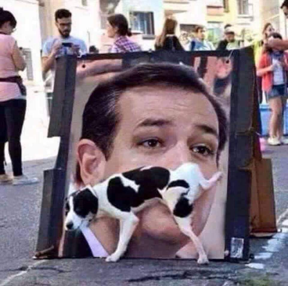 Canine opinion makers expressing themselves on Ted Cruz